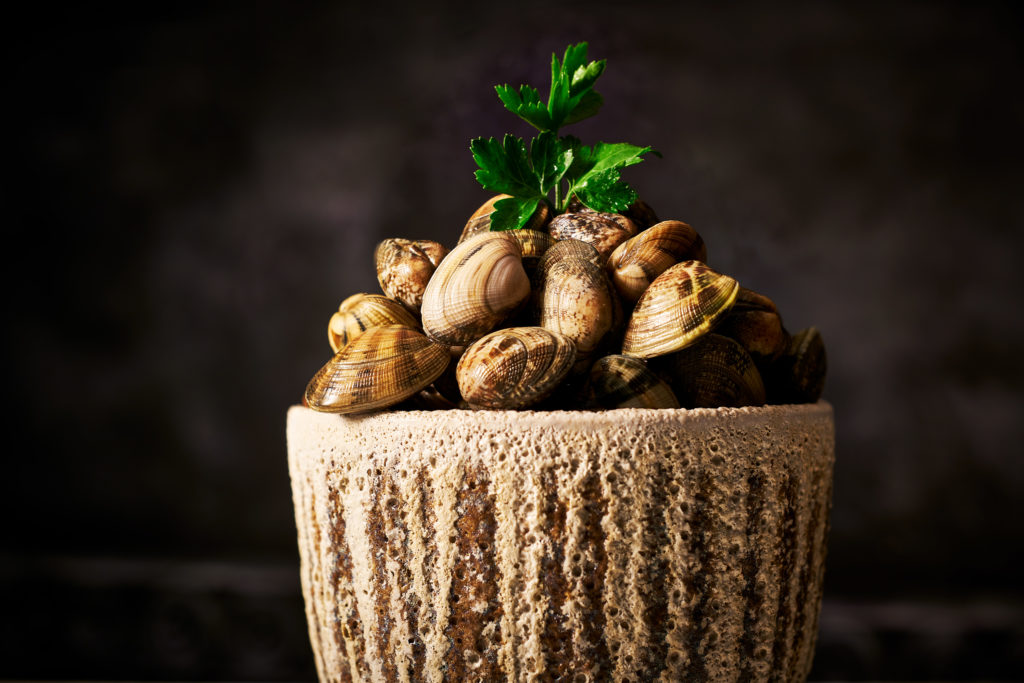Clams in shell by Food Photographer London